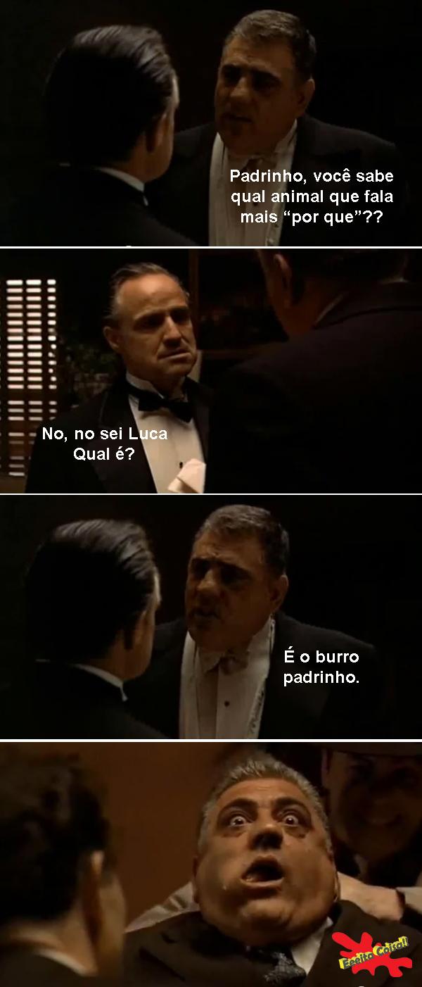 so os melhores, godfather, poderoso chefao, burro, eeita coisa