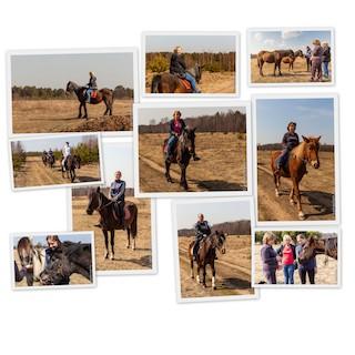 Конные прогулки в Тверской области и тимбилдинг