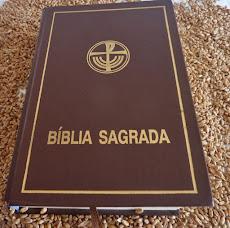 BÍBLIA SAGRADA: O PRIMEIRO GUIA DO CATEQUISTA