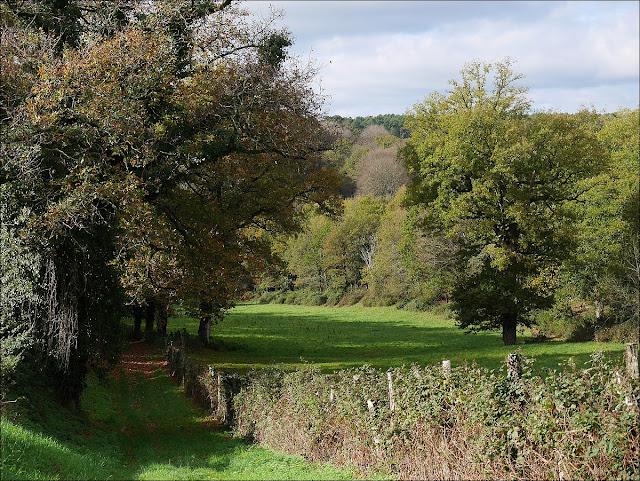 Promenade ou randonnée, chemin à Renac