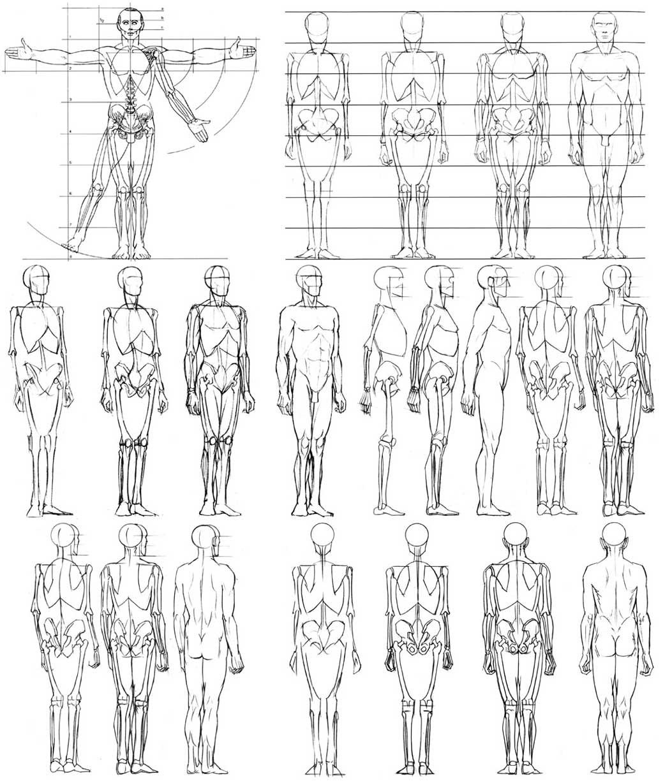 Line Drawing Human Figure : Esculturas y modelado recursos