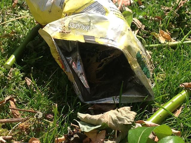 Frog in Crisp Packet