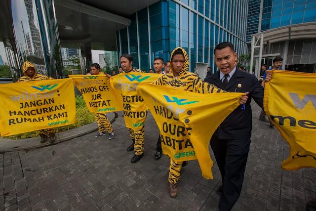 Aktivis Greenpeace Desak Wilmar Hentikan Perusakan Hutan