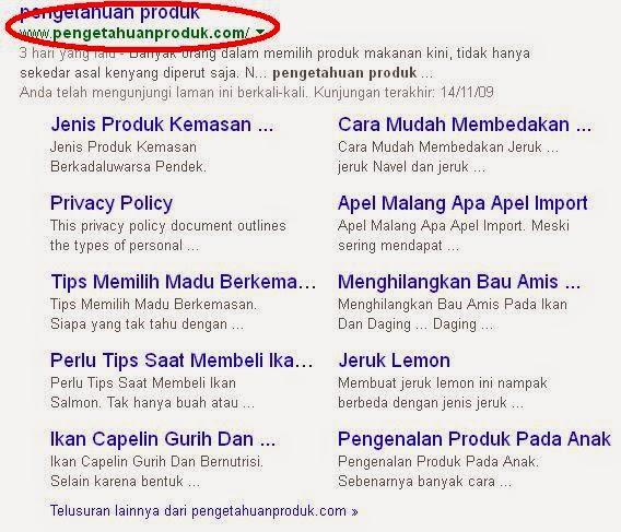 Blog pengetahuanproduk.com Dapat Sitelink Dari Google
