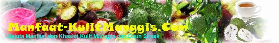 Manfaat dan khasiat kulit manggis dan daun sirsak untuk kesehatan