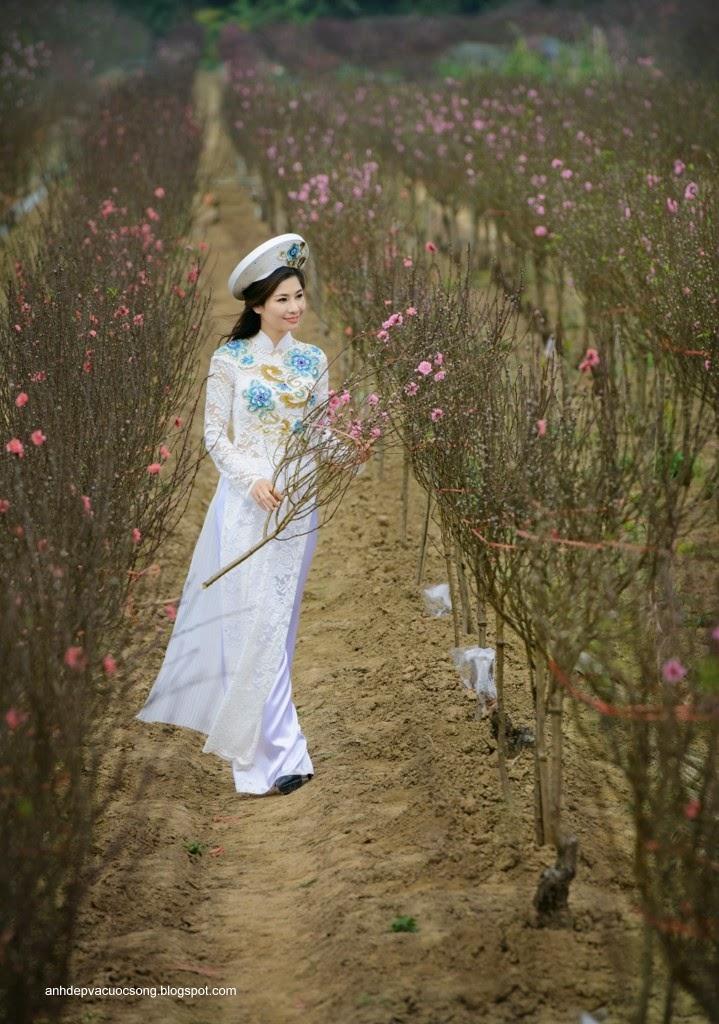 Người đẹp dạo phố hoa đào 8