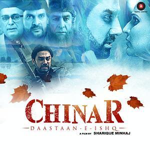 Chinar Daastaan-E-Ishq 2015 Hindi WEB HDRip 480p 300mb indian indian movie in hindi compressed small size free download at world4ufree.cc