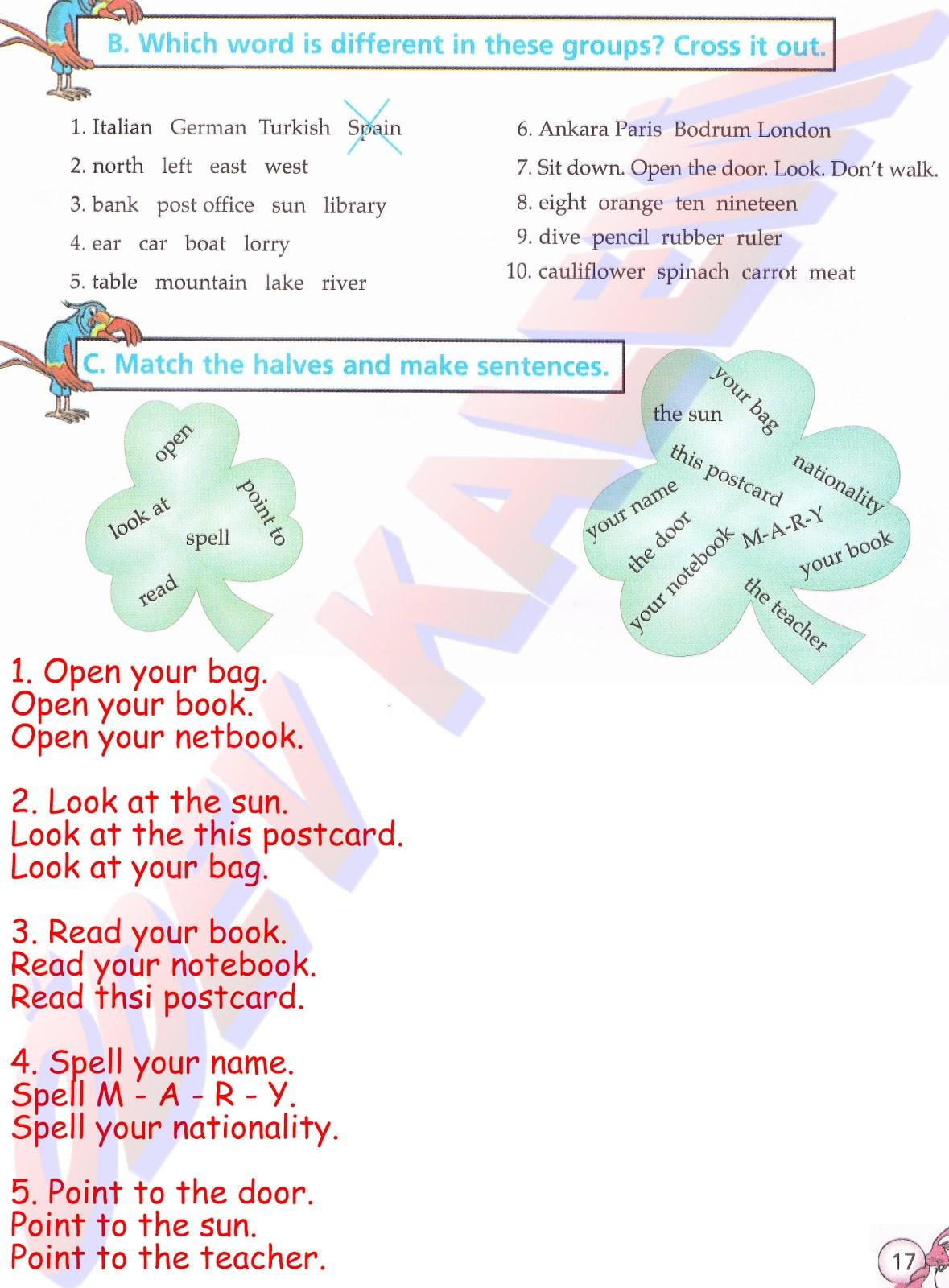 Pasifik Yayinlari 5 Sinif Ingilizce Dersi öğrenci çalişma Kitabi