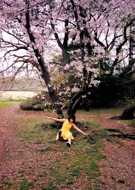 Sakura Miyawaki 宮脇咲良 Sakura さくら Photobook 写真集 01