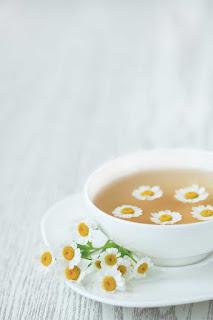 Pet cajeva za pocetak leta HBC-ON10-srstock-57193993-chamomile-tea