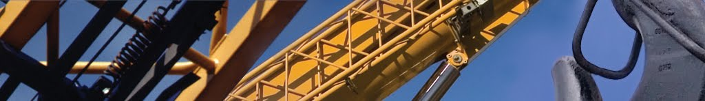 Industrial Cranes: Bridge Crane, Jib & Gantry Cranes by Acecrane