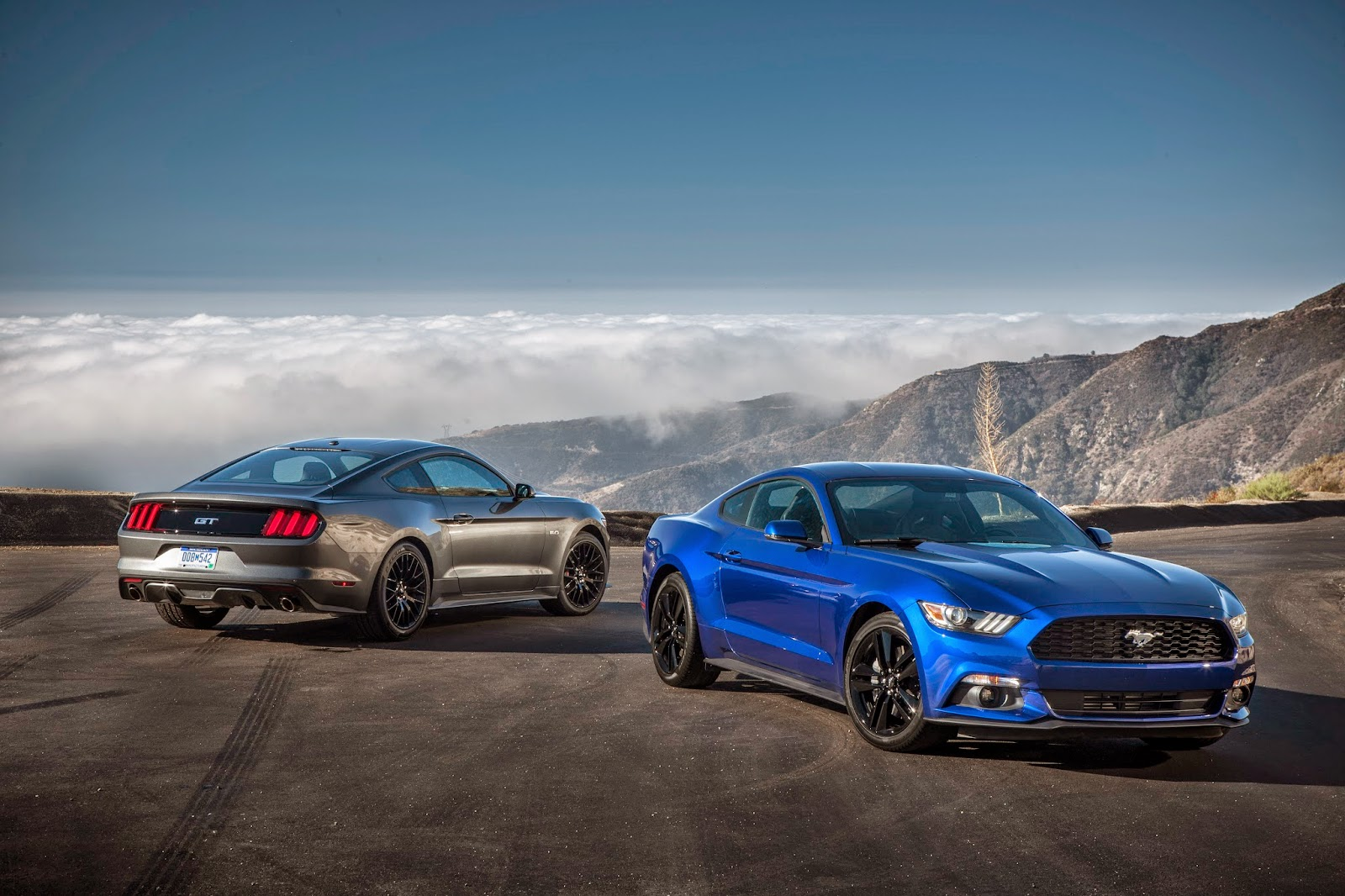 autos am ricaines blog 2015 ford mustang les tarifs allemands. Black Bedroom Furniture Sets. Home Design Ideas