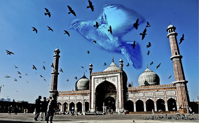 Jama Masjid is largest mosque in India and it's situated in Old Delhi region !!! And it's also a favorite place of all delhite pigeons :)You can see these pigeons revolving around the mosque most of the times. This photograph is photographed as an impression of pigeon is made on top of it... The photograph with lot of pigeons surrounding Jama Masjid is original !!