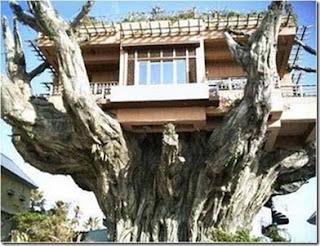 unique extreme house