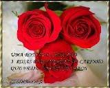 Selo oferecido pela Rosa
