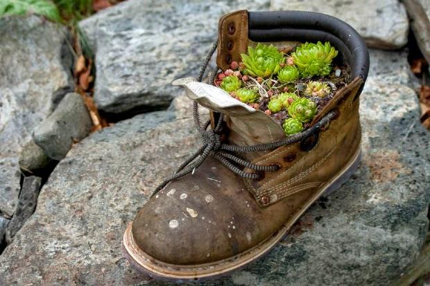 Qual o estado de seus sapatos?