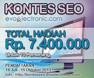 Info Kontes SEO evoelectronic.com
