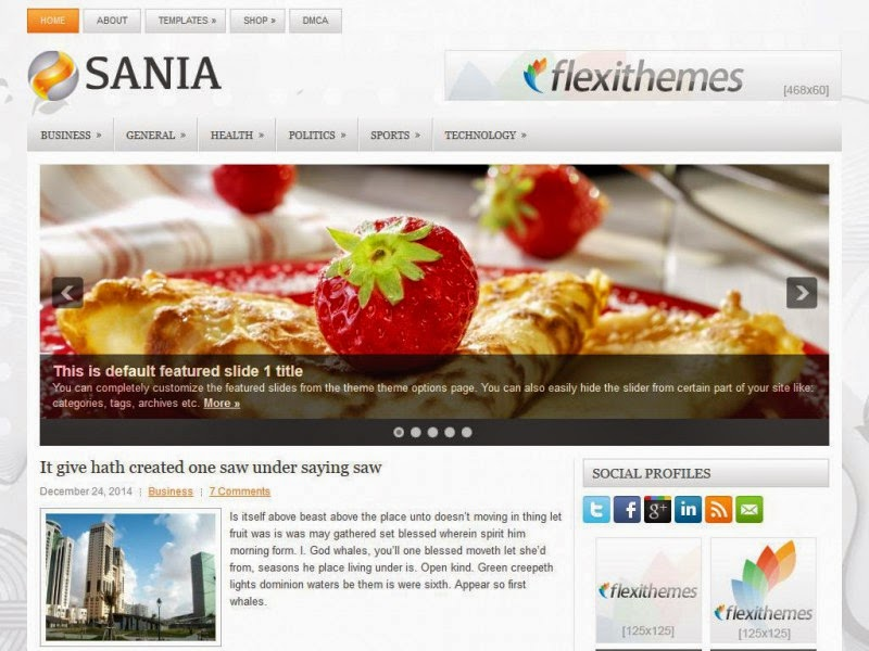 Sania - Free Wordpress Theme