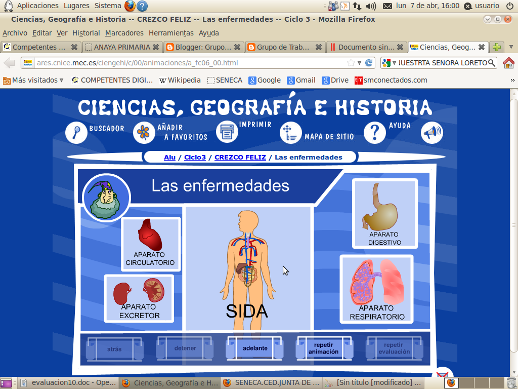 http://ares.cnice.mec.es/ciengehi/c/00/animaciones/a_fc06_00.html