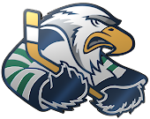 Surrey Eagles Website