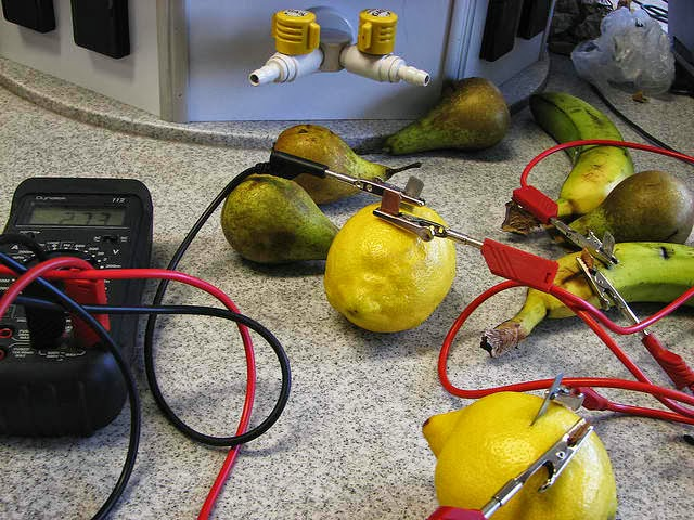 Investigatory Project - Fruit battery