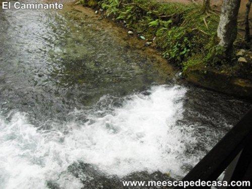 Naciente del Río Tioyacu fotografiado desde el puente (Rioja, Perú) 3