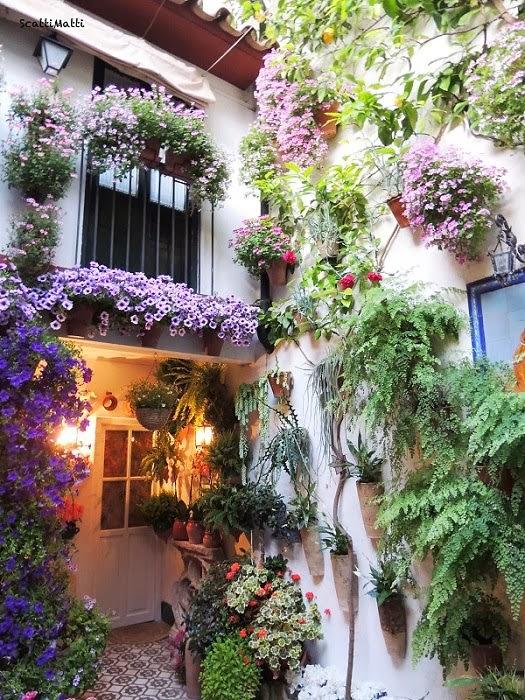 Las colecciones de mi vida ventanas y balcones patios - Patios andaluces decoracion ...