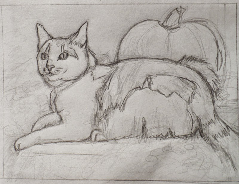 initial sketch for Pumpkin cat portrait