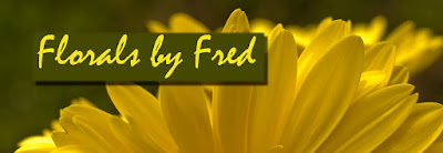 http://www.zazzle.com/floralbyfred?rf=238304596697812645&tc=blog