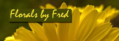 http://www.zazzle.com/floralbyfred?rf=238304596697812645&tc=blog