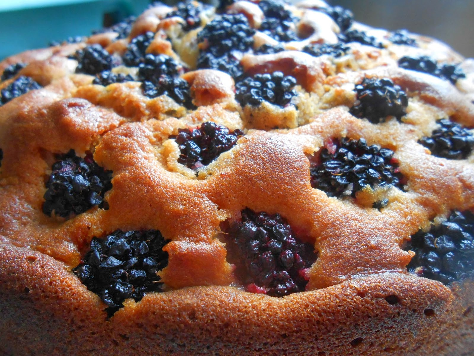 Blackberry Honey Cake