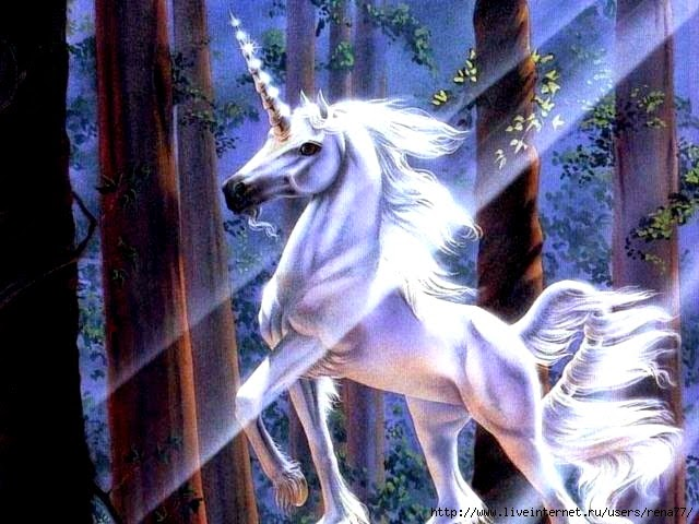 Unicorns Were Real Animals, Answers in Genesis Says