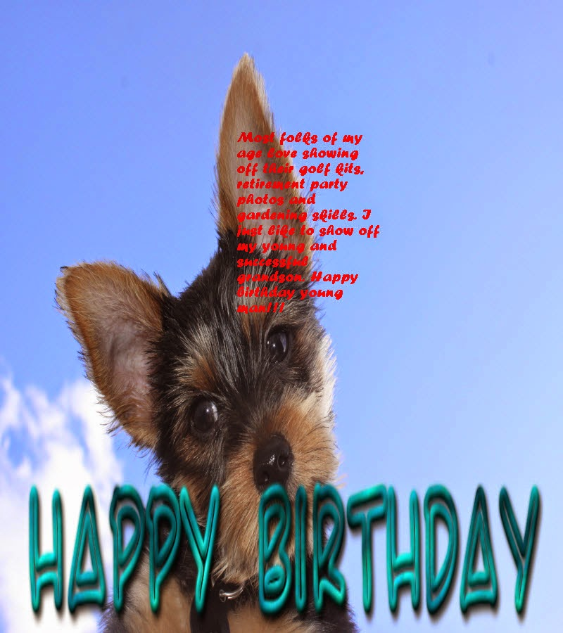 Birthday Wishes For Grandson Happy Birthday Message And Quotes