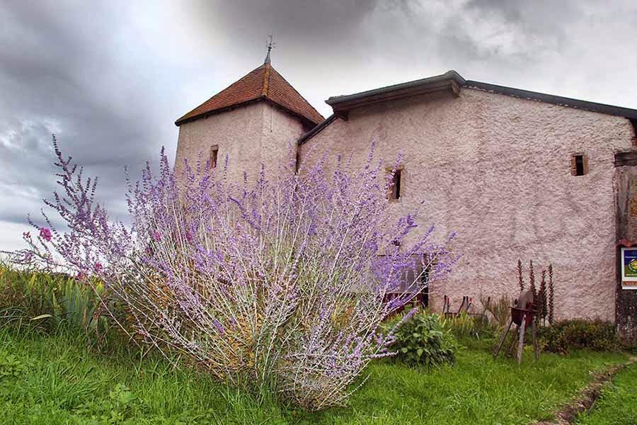 Domaine des Templiers