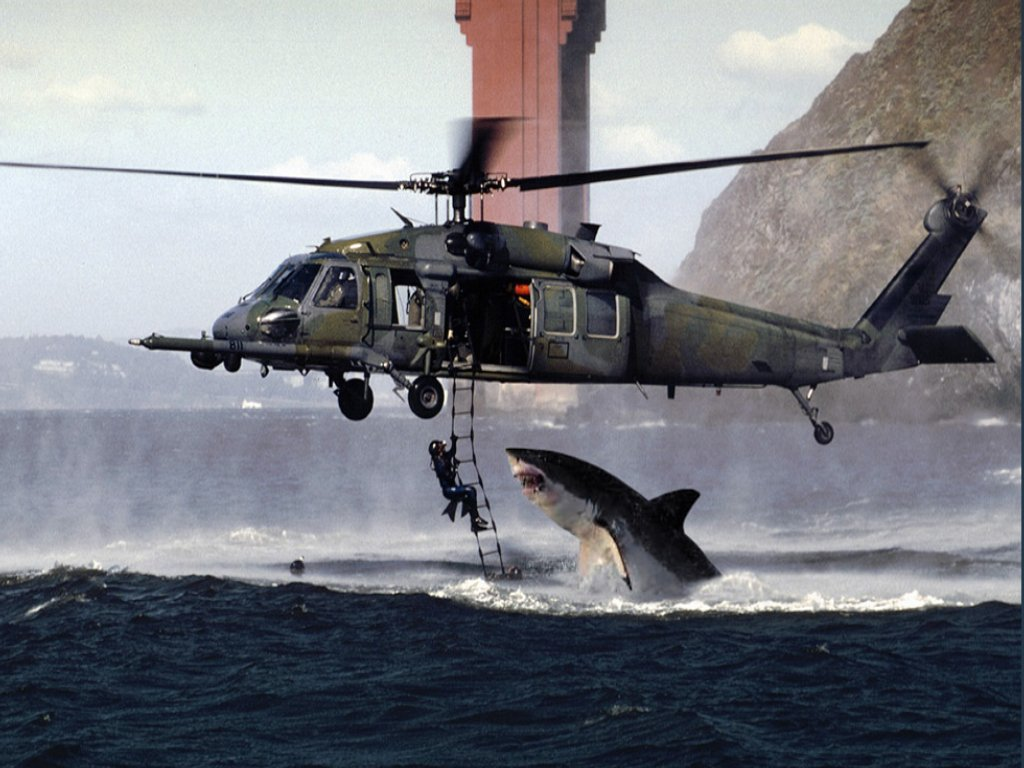 32   Great Great White Shark Jumping At A Helicopter During for Great White Shark Jumping At A Helicopter During Training  568zmd