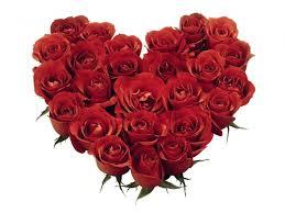 Mawar - Bunga Ucapan Selamat Valentine Istimewa