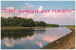 Reka Begej kraj sela Perlez