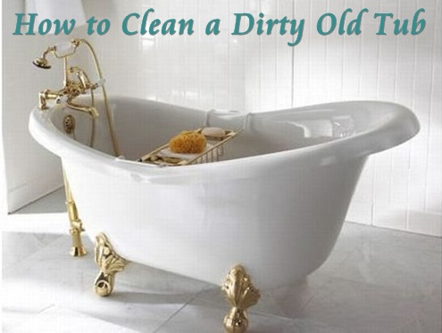 Olivia Cleans Green How To Clean A Durty Old Tub