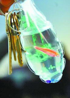 keychain guna hidupan air hidup