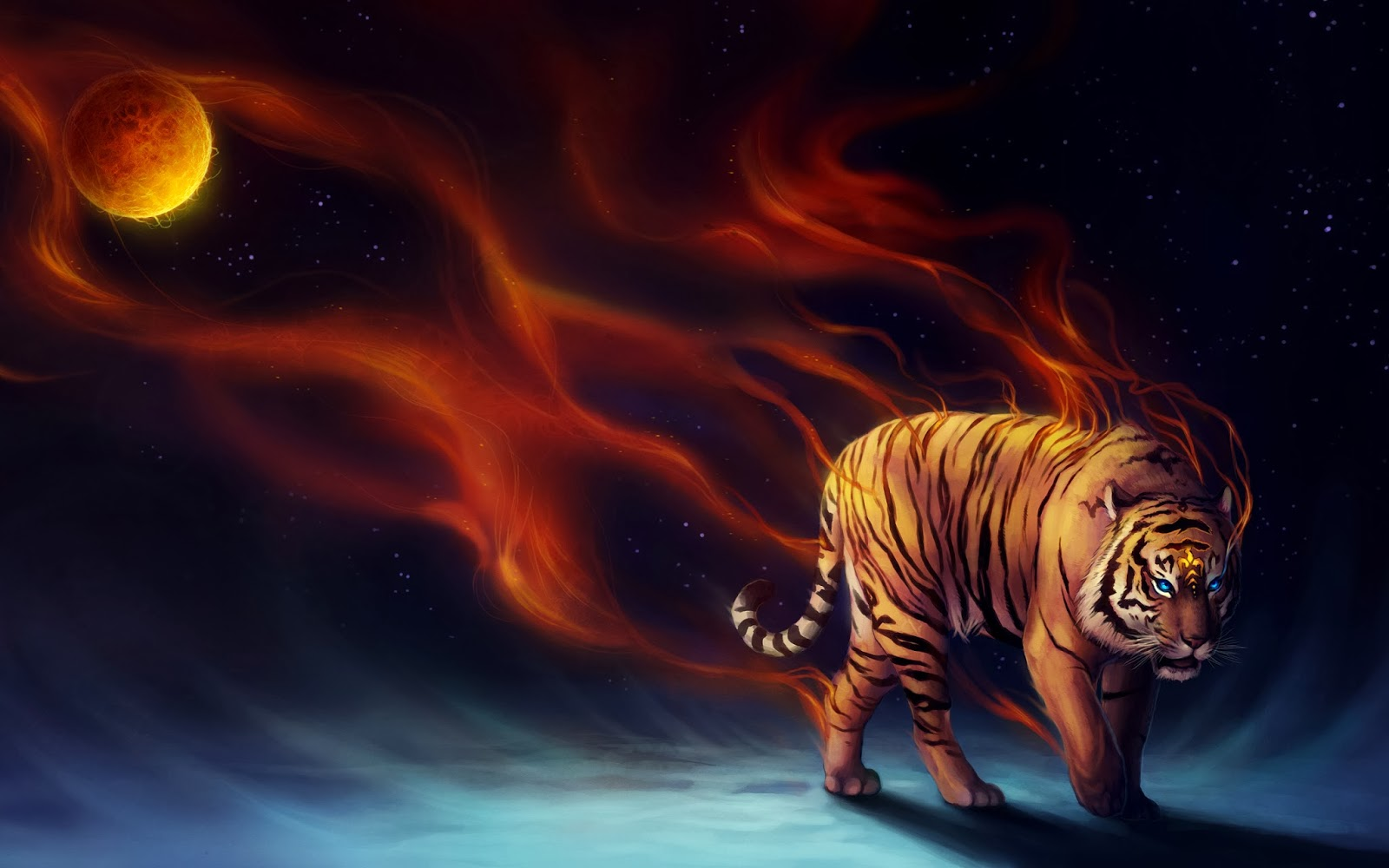 All New Wallpaper Tiger Hd Wallpapers