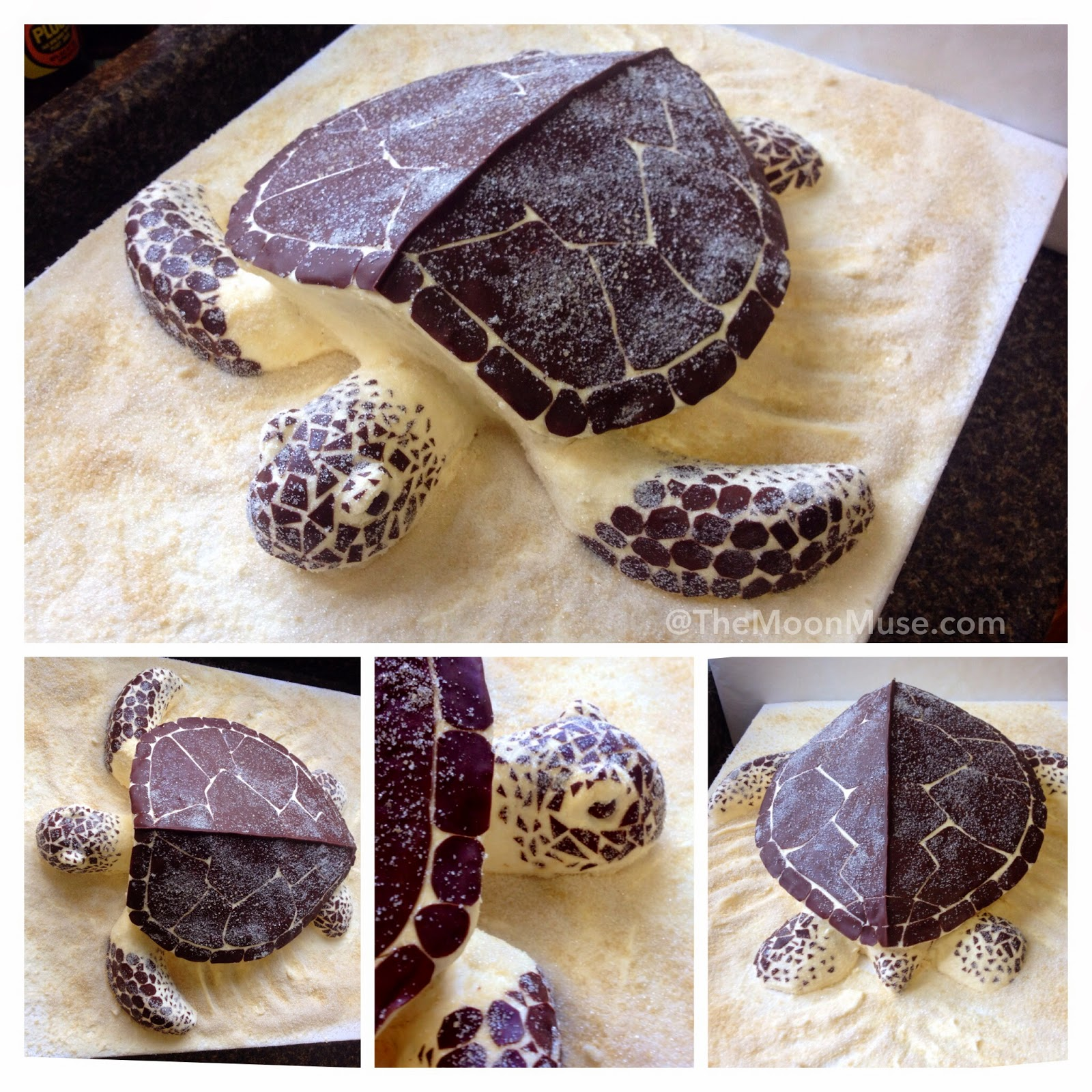 The Moon Muse Blog Holy Sea Turtle Shaped Cake