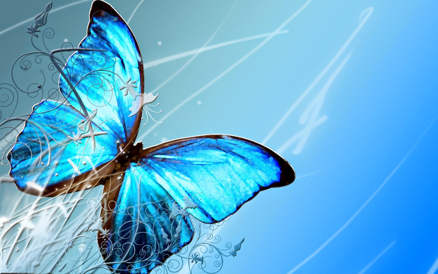 Butterfly HD 1024 X 768 Size Wallpapers