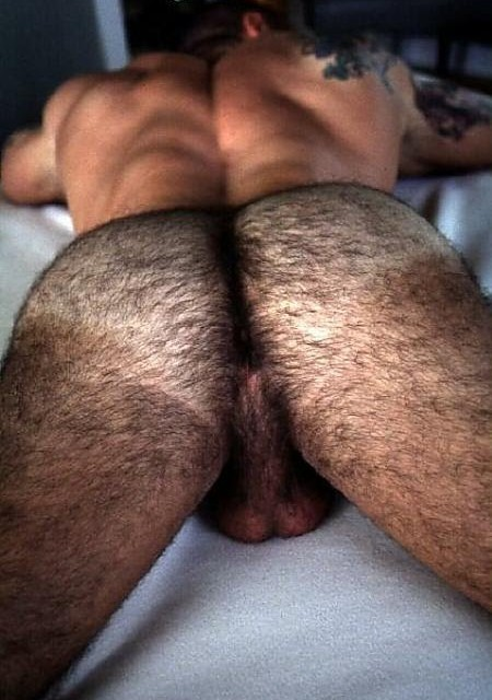 Hairy Gay Ass