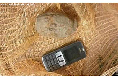 granada de mano en bolsa patatas