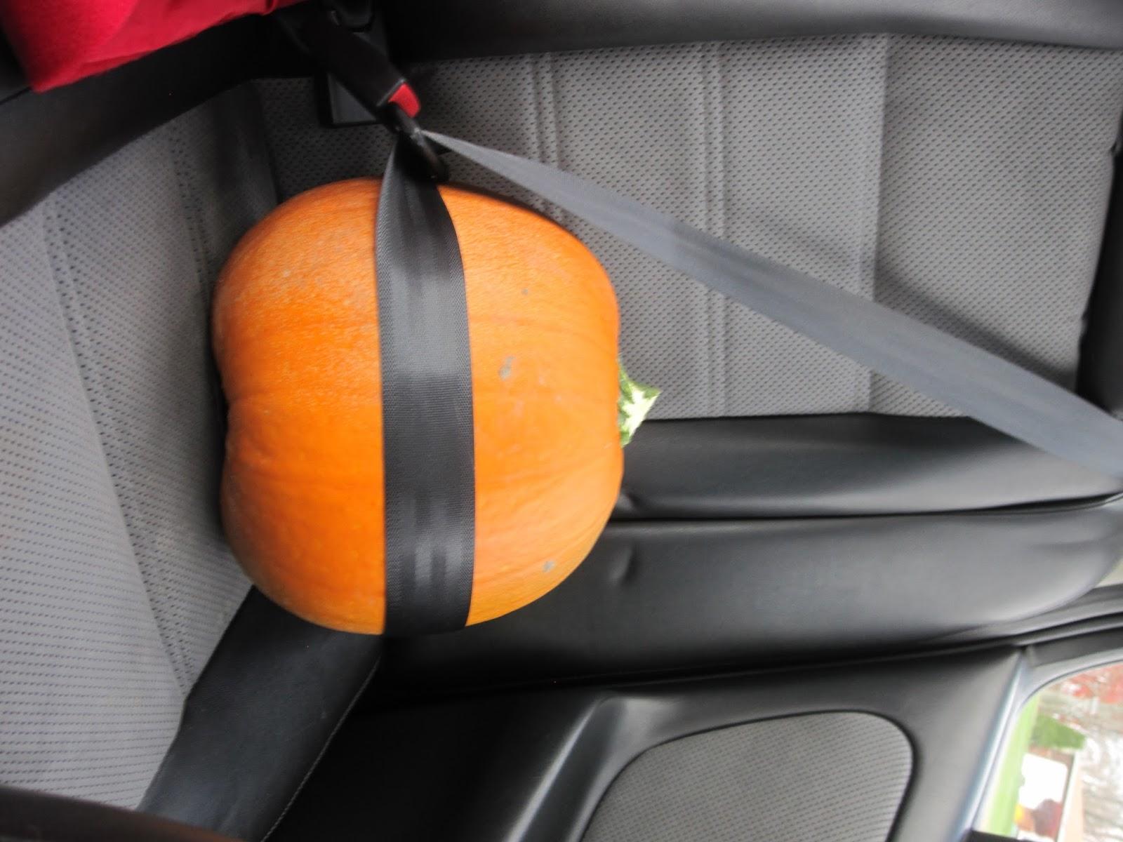 how to keep fresh pumpkin seeds