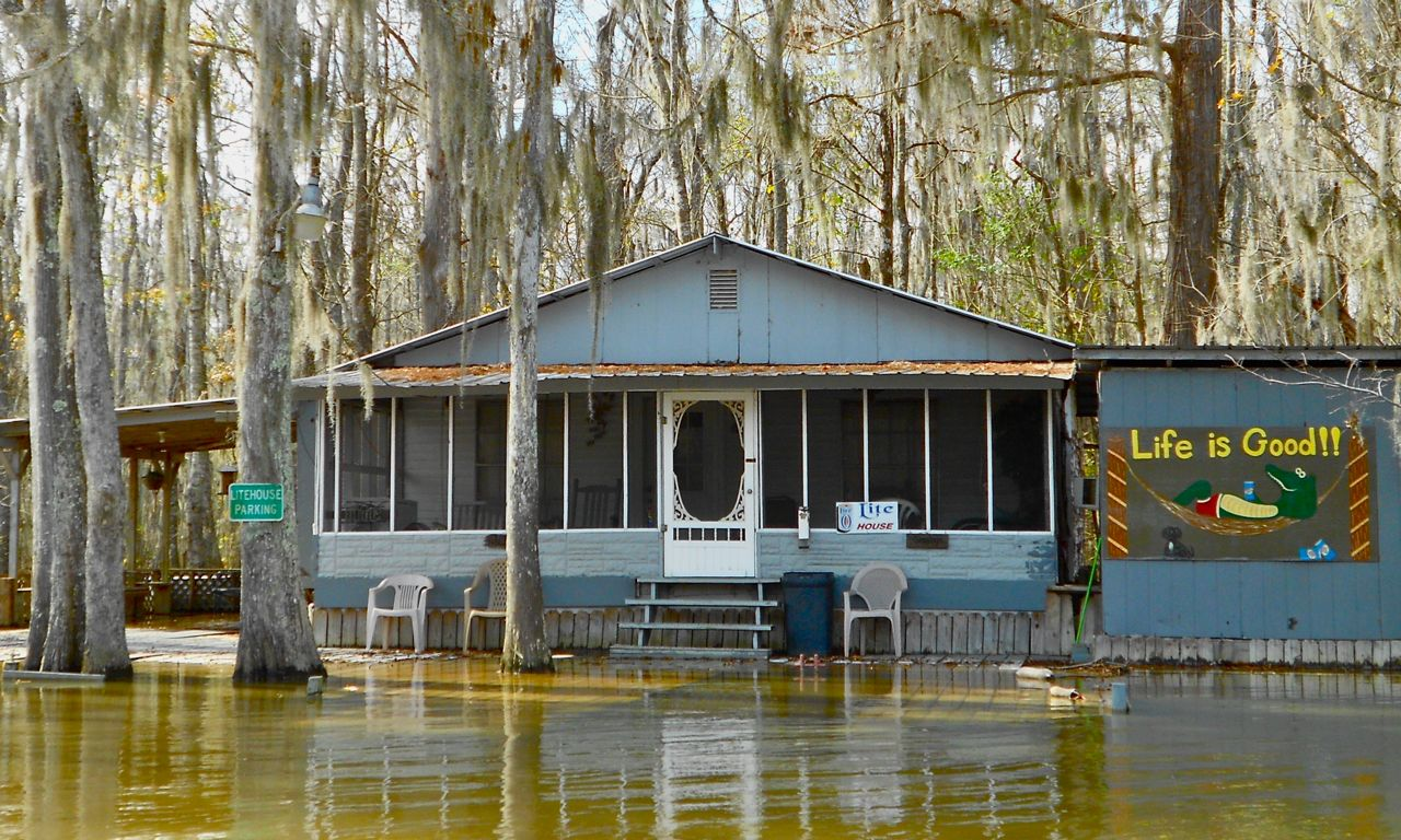 Image Gallery Swamp Homes