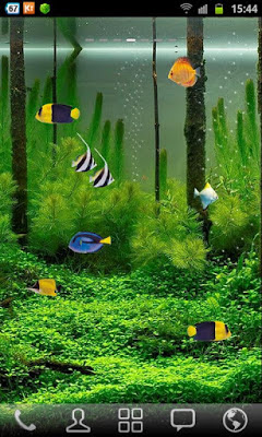 Free Aquarium Live Wallpaper  Samsung Galaxy S3