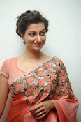 Hamsa Nandini photos at Legend audio-thumbnail-10