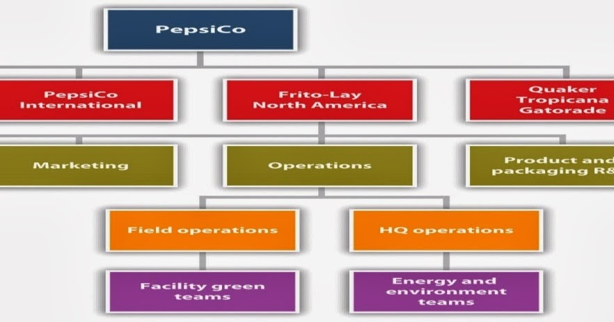 organizational chart of pepsi cola company Pepsico's organizational structure has been reformed several times to address  changing global market conditions the company's current.
