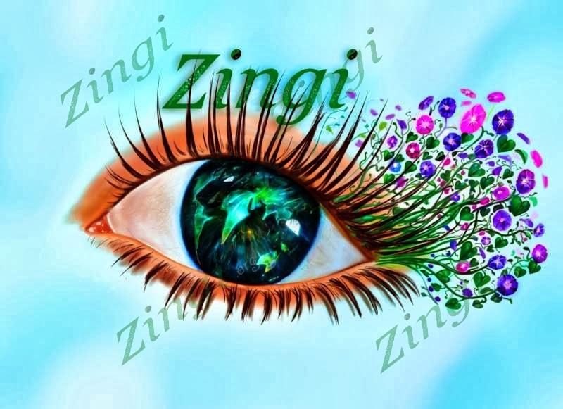 Новый, красивый язык Zingi